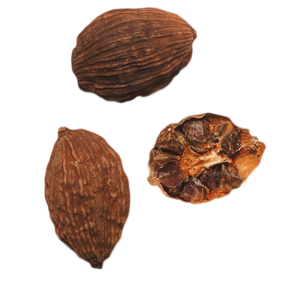 Brown Cardamom Whole ( Badi Elaichi ) 50 gm