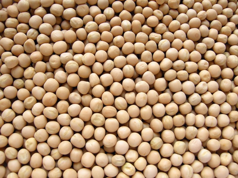 Dry Mutter ( Dry White Peas )(INDIAN) [ 1 kg ]