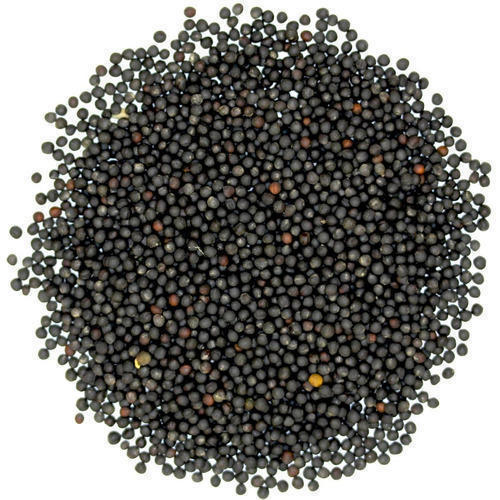 Chuk-De Mustard Seeds Big 200 gm