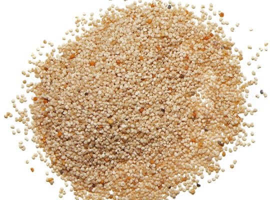 Poppy Seeds (Khas Khas) 100g