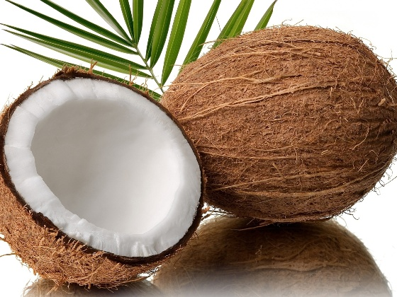 Indian Coconut Whole ( Fresh )